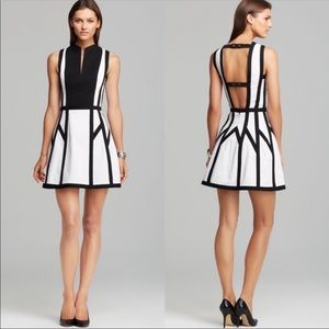 Robert Rodriguez Graphic Spear Dress